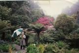 Stefan Buczacki - 'Gardening Britain' & 'Gardening Roadshow'