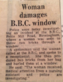 Woman damages window